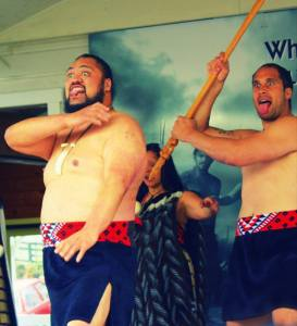 The fierce Maoris